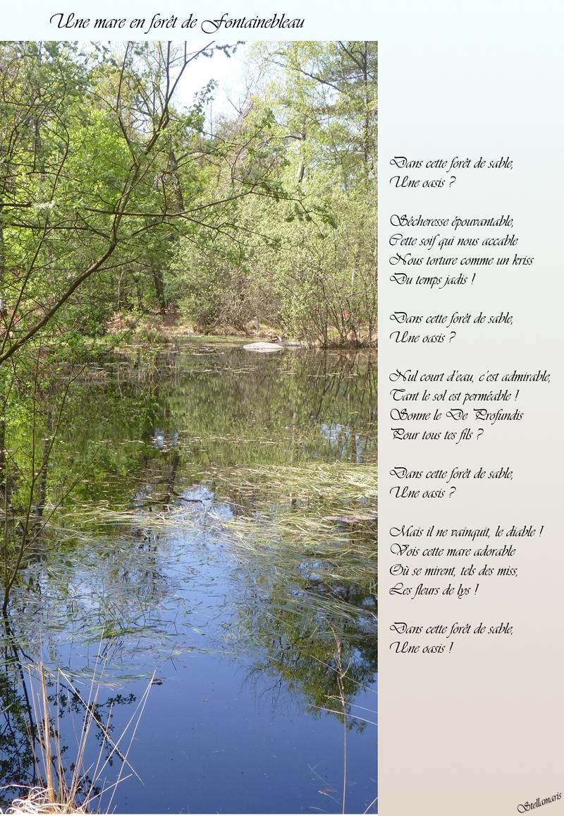 Une mare en forêt de Fontainebleau / Dans cette forêt de sable, / Une oasis ? / / Sécheresse épouvantable, / Cette soif qui nous accable / Nous torture comme un kriss / Du temps jadis ! / / Dans cette forêt de sable, / Une oasis ? / / Nul court d'eau, c'est admirable, / Tant le sol est perméable ! / Sonne le De Profundis / Pour tous tes fils ? / / Dans cette forêt de sable, / Une oasis ? / / Mais il ne vainquit, le diable ! / Vois cette mare adorable / Où se mirent, tels des miss, / Les fleurs de lys ! / / Dans cette forêt de sable, / Une oasis ! / / Stellamaris